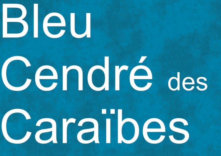 Couleurs t-shirts BLEU CENDRÉ des CARAIBES